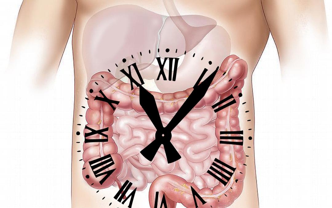 Nové léky na Crohnovu chorobu aulcerózní kolitidu